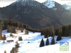 Archiv Foto Webcam Bergstation Hornbahn, Blick Rodelbahn 02:00