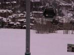 Archived image Webcam BC Ranch at Beaver Creek 02:00