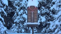 Archiv Foto Webcam Telluride: Schneehöhe nahe des Gold Hill Express 02:00