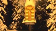 Archiv Foto Webcam Telluride: Schneehöhe nahe des Gold Hill Express 14:00