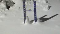 Archiv Foto Webcam Schneehöhe Sunshine Village 21:00