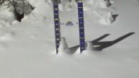 Archiv Foto Webcam Schneehöhe Sunshine Village 01:00