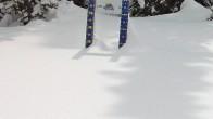 Archiv Foto Webcam Schneehöhe Sunshine Village 05:00