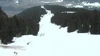 Archiv Foto Webcam Blick ins Tal, Rangger Köpfl 12:00