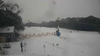 Archived image Webcam Dinner Plain: Ski Resort 10:00