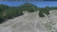 Archiv Foto Webcam Canyon Lodge 03:00