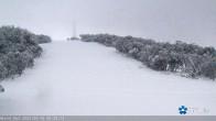 Archiv Foto Webcam Mt Buller: Burnt Hut Spur 00:00