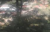 Archiv Foto Webcam Ridge Runner Alpincoaster 10:00