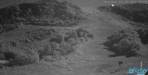 Archived image Webcam Capanna Niculin mountain hut 20:00