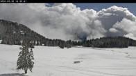 Archiv Foto Webcam Langlauf Plateau Arselle 08:00