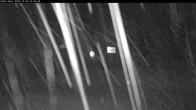 Archiv Foto Zweite Comet Lift Webcam 21:00