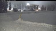 Archived image Webcam Brewer´s Pond Cam 20:00
