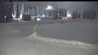 Archived image Webcam Brewer´s Pond Cam 22:00