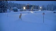 Archived image Webcam Brewer´s Pond Cam 02:00