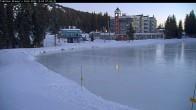 Archiv Foto Webcam Blick auf Brewer´s Pond 02:00