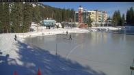 Archiv Foto Webcam Blick auf Brewer´s Pond 06:00