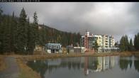 Archived image Webcam Brewer´s Pond Cam 05:00