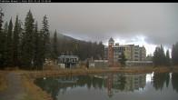 Archived image Webcam Brewer´s Pond Cam 07:00