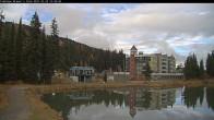 Archived image Webcam Brewer´s Pond Cam 09:00