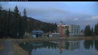 Archived image Webcam Brewer´s Pond Cam 11:00