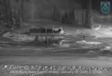 Archiv Foto Webcam Mt Hood Meadows Ski Resort Talstation 21:00