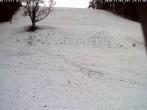 Archiv Foto Webcam Wiesensteig Piste 08:00