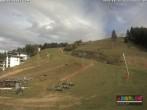 Archiv Foto Webcam Chamois d'Or - 1450 m ü.NN. 08:00