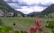 Archived image Webcam Guest house Kaiser 08:00