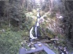 Archived image Webcam Waterfall in Triberg 00:00