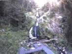 Archiv Foto Webcam Triberg Wasserfall 07:00