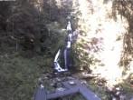 Archiv Foto Webcam Triberg Wasserfall 09:00