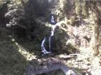 Archiv Foto Webcam Triberg Wasserfall 11:00