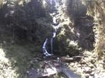 Archiv Foto Webcam Triberg Wasserfall 13:00