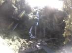 Archiv Foto Webcam Triberg Wasserfall 15:00