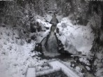 Archiv Foto Webcam Triberg Wasserfall 08:00