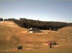 Archiv Foto Webcam Blick auf den Schneeberg Waldau 11:00
