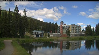 Brewer´s Pond Cam