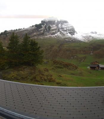 Grindelwald Bussalp Panorama