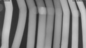 Hahnenklee: Blick auf den Bocksberg