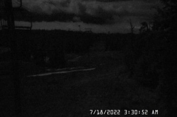 Timberline Lodge: Webcam Jeff Flood Express
