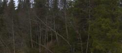 Kvitfjell - Vestsiden