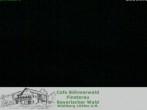 Langlaufzentrum Finsterau: Blick auf die Loipen