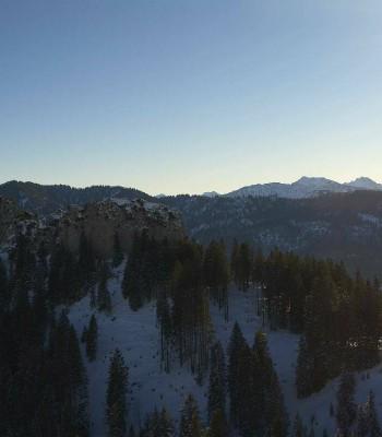 Panoramic view: Mountain hut Grünten
