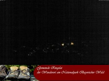 Ringelai, Bavarian Forest
