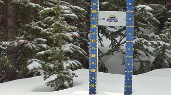 Schneehöhe Sunshine Village