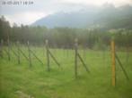 Cortina d'Ampezzo: Vigna 1350