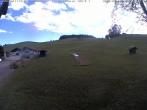 Ski Resort Sinswang