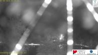 Skigebiet Cerreto Laghi - Blick über die Skipisten