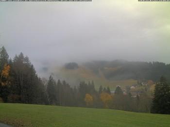 Speicherteich Höhenweg - Jungholz