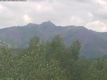 Donita's Cam Crested Butte